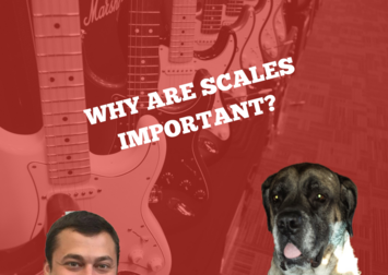 Why are Guitar Scales Important? Top Reasons Revealed